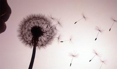 6_-model-blowing-dandelion-clock